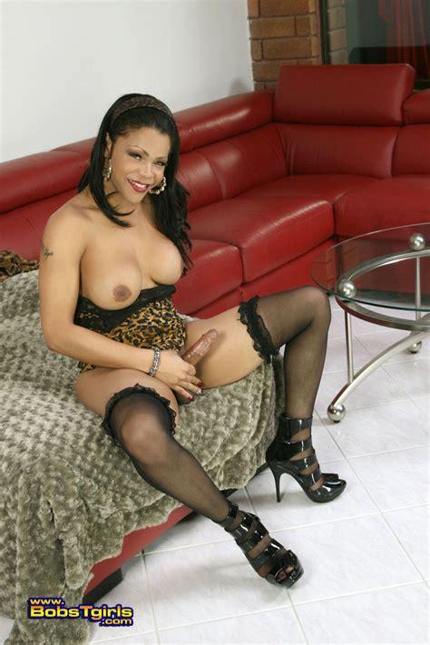Shemale sheeba starr porn videos jpg 800x1200